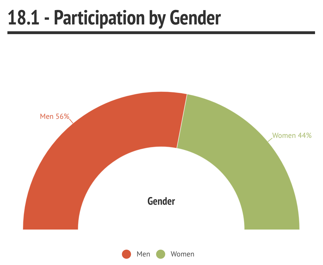 18.1 Participation by Gender